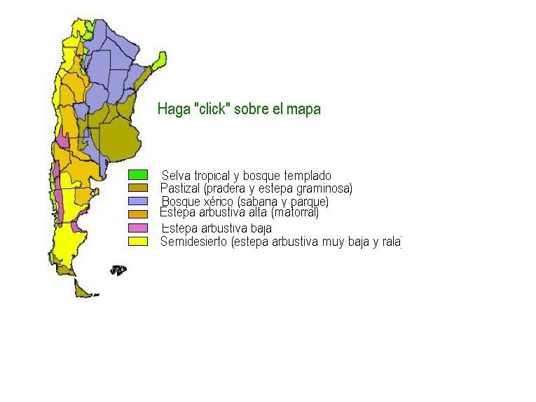 Pagina nueva 7 for Paginas de chimentos argentina